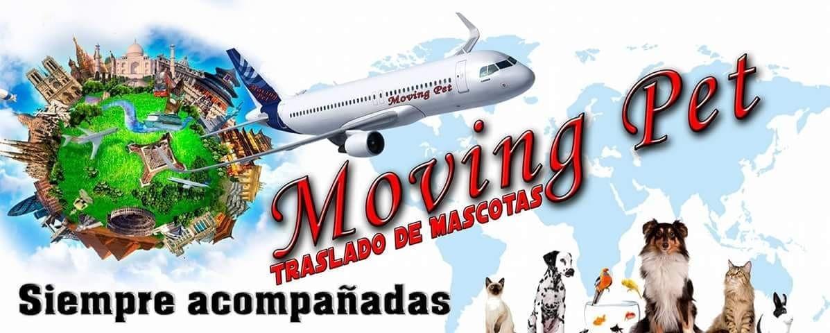 Mudanzas y Guardamuebles en Valencia La Seda - 1